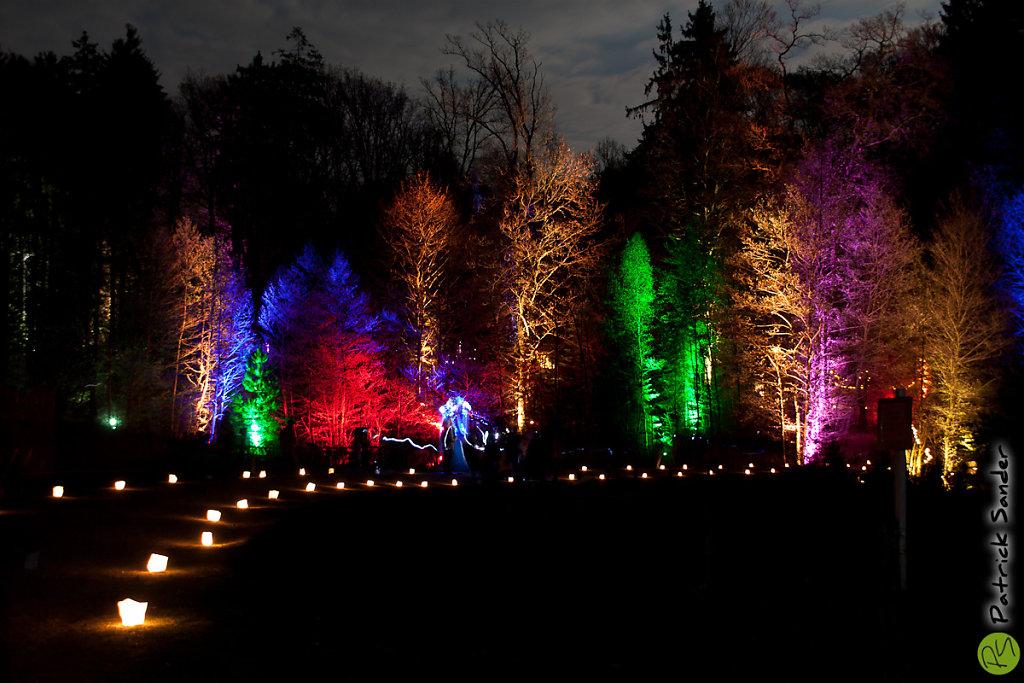 Waldlichter Wildpark Vosswinkel